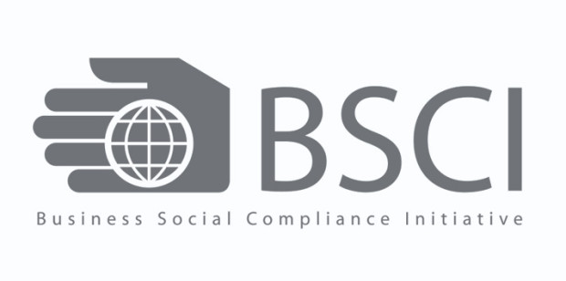 Image result for BSCI